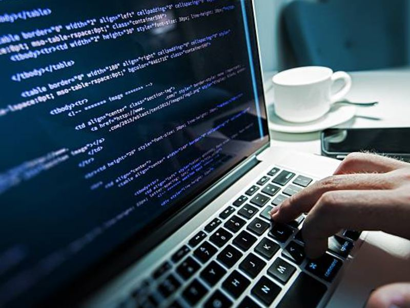 menjadi web developer